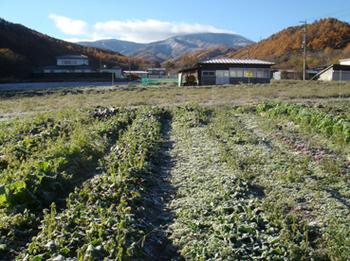 蓼科山20131112.jpg