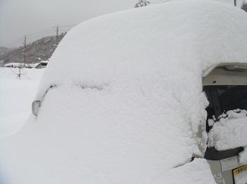 雪1/20140215.jpg